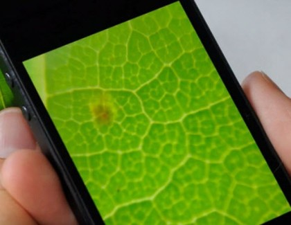 Researchers at Houston Create Camera Lenses That Can Turn Your Smartphone into Microscopes