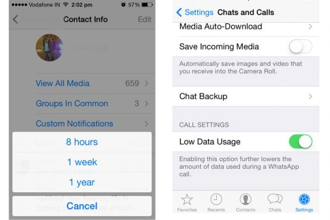 WhatsApp Update for iOS - Mute Individual Conversation