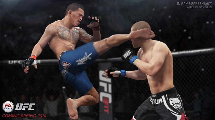 EA Sports UFC - Top 10 Offline Games