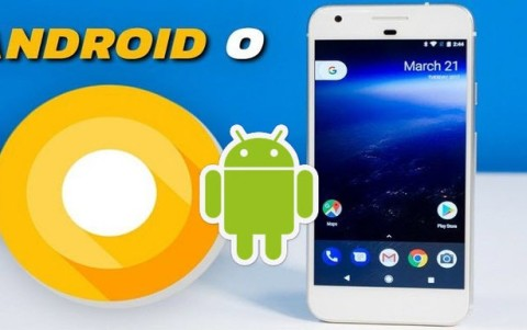 Will Your Smartphone Get an Android Update?